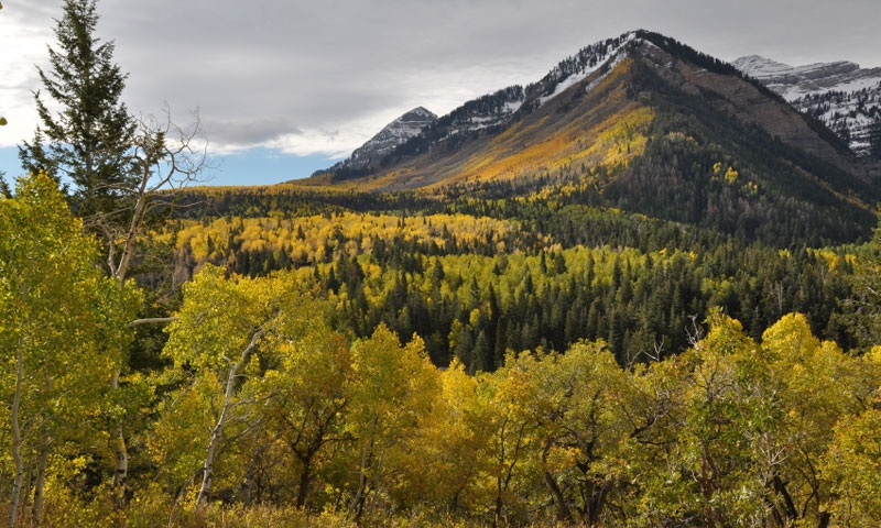 Alpine Loop in the Wasatch Mountains