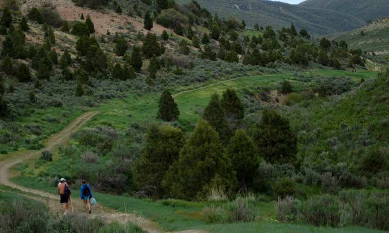 Uinta National Forest Hiking Trail