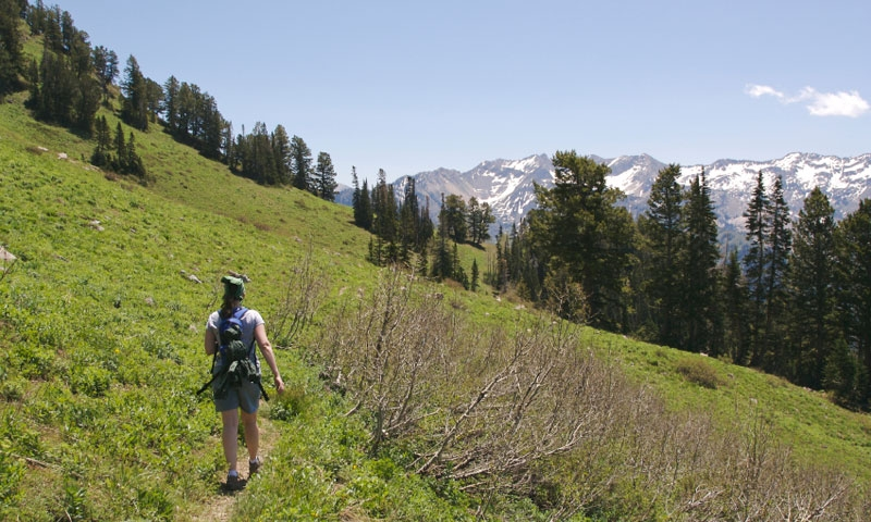 Hiking in the Wastach Range