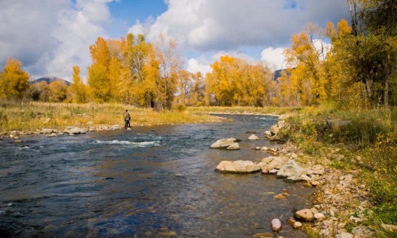 Fishing the Provo River