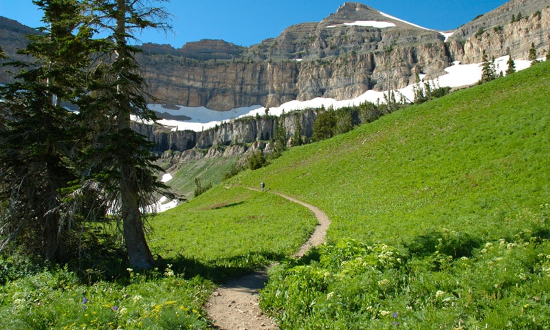 Hiking Trail near Mount Timpanogos