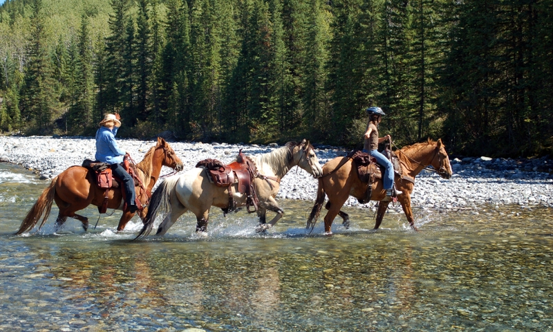 Horseback Riding Rocky Mountains